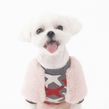 amylovespet PET CLOTHING 595680