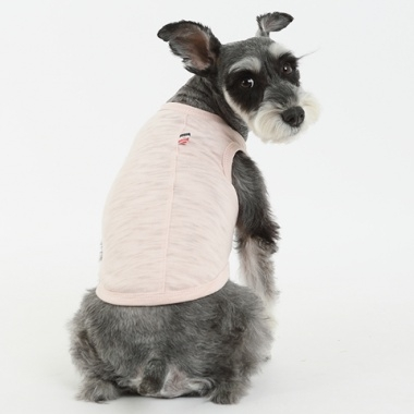 amylovespet PET CLOTHING 596363