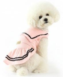amylovespet PET CLOTHING 598126