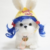 rabbit hat  pet wig